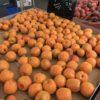 Olympia, WA Farmers Market