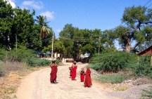 Little monks