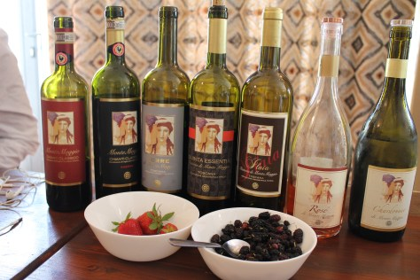 Vertical wine tasting at the magical Fattoria di Montemaggio in Tuscany