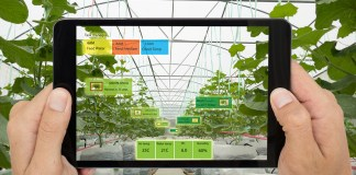 Artificial intelligence in the food industry