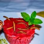 Halloween Special – Insektenmassaker und Einhornblut