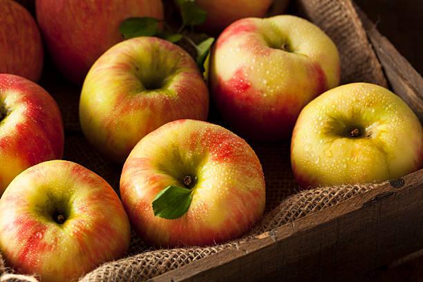 Raw Organic Honeycrisp Apples Ready to Eat