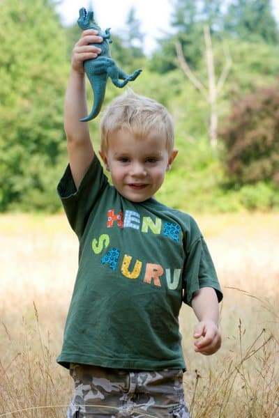 Dinosaur Themed Birthday Party Ideas Henry Turns 3 With A Dino Dig