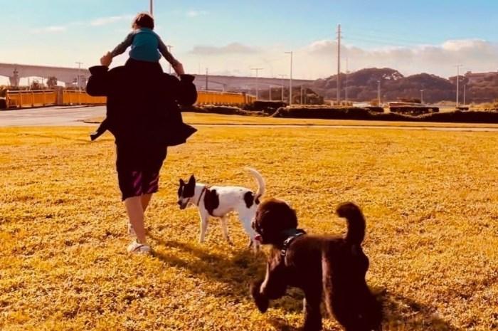 周杰倫變超級奶爸,扛著兒子漫步父愛滿滿