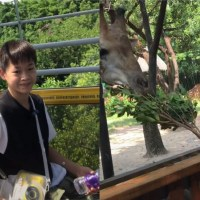 全红婵第一次去动物园!老虎隔着玻璃向她扑来,红姐吓了一跳