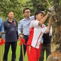 全红婵种下冠军树并留签名,干活干净利落,新发型抢镜