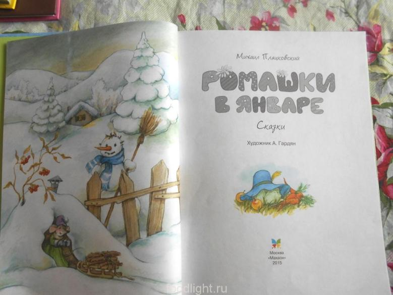 Ромашки в январе. Михаил Пляцковский