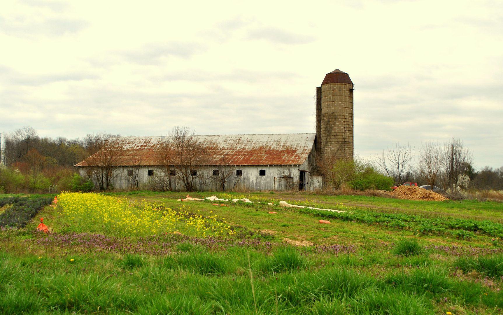 Oxmoor Farm