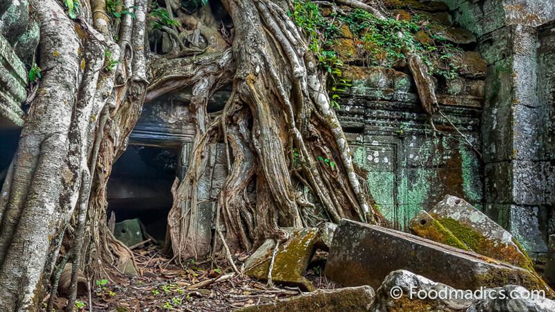 tomb_raider_taprohm__cambodia