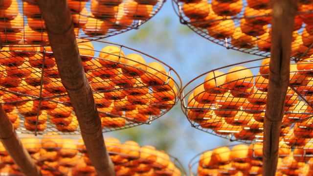 orange round fruit on black metal round mesh container