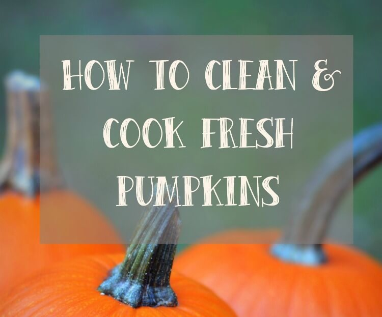 How To Cook Pumpkins For Use In Your Favorite Fall Recipes…