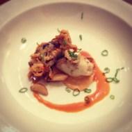 Taita's Squid