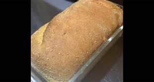 Elizabeth Bakes No Knead English Muffin Loaf