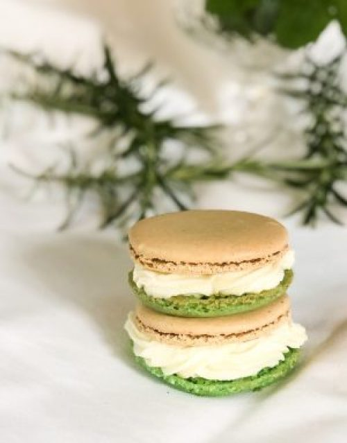 Half Green and Half Cream Coloured Elderflower Gin and Tonic Macarons