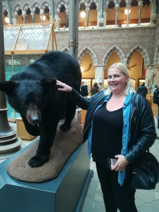 Touching A Black Bear at Oxford Museum of Natural History