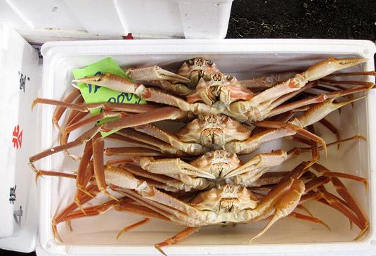 Crabs at Tokyo's Tsukiji Fish Market