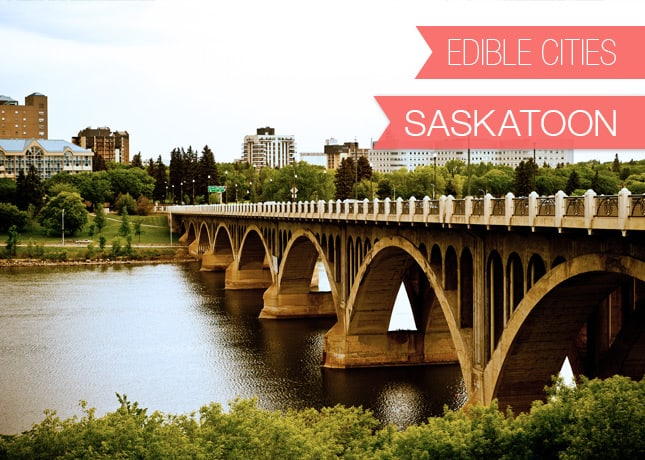 {Edible Cities} Saskatoon, with Renee from Sweet Sugar Bean // FoodNouveau.com