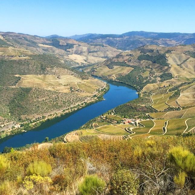 Douro Valley, Portugal // FoodNouveau.com