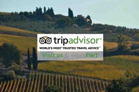 Dream Italy FWT on Tripadvisor