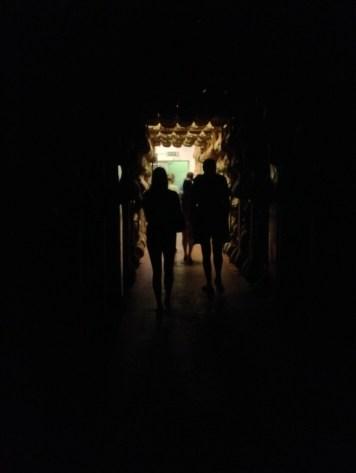 Into the Secret Tunnel of Ham