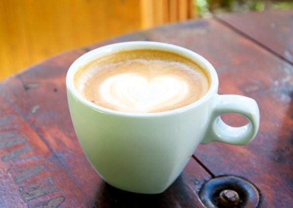 _cafe0208