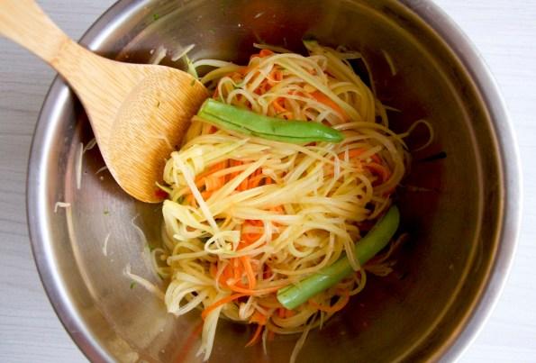 _green-papaya-salad0509