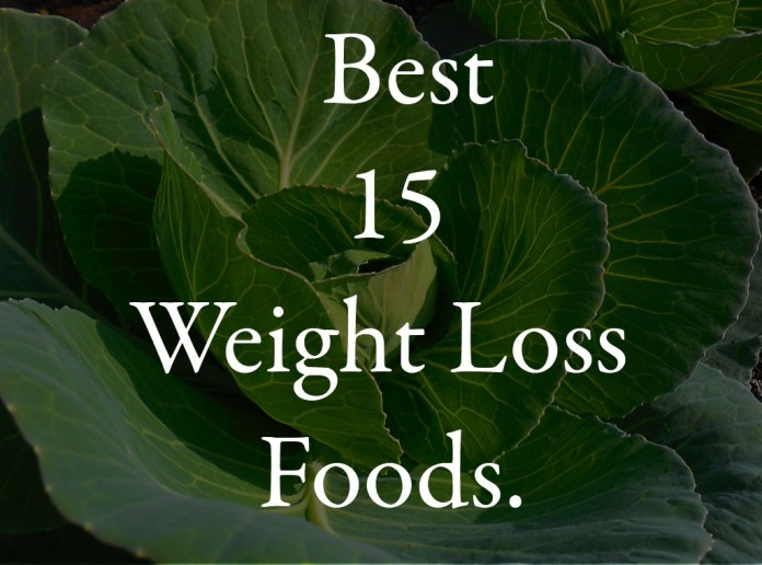 Best 15 Weight Loss Foods.