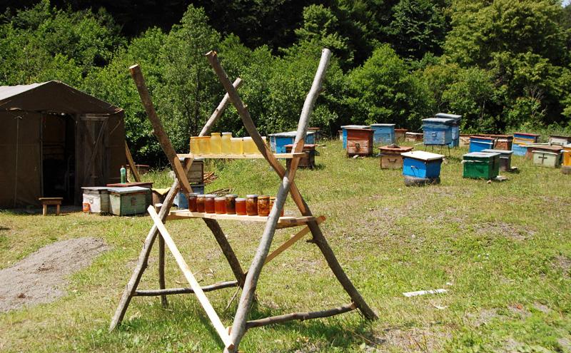 Road to Ambrolauri - Honey