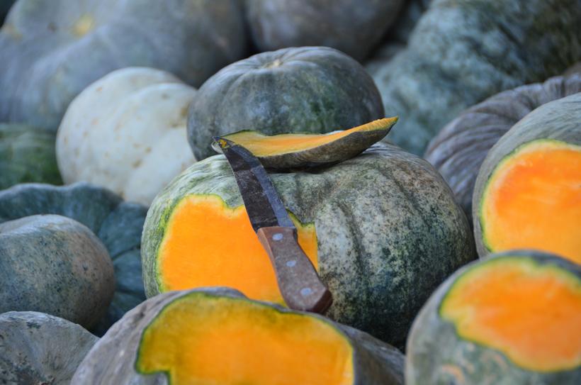 Tashkent - Chorsu Bazaar - Pumpkins