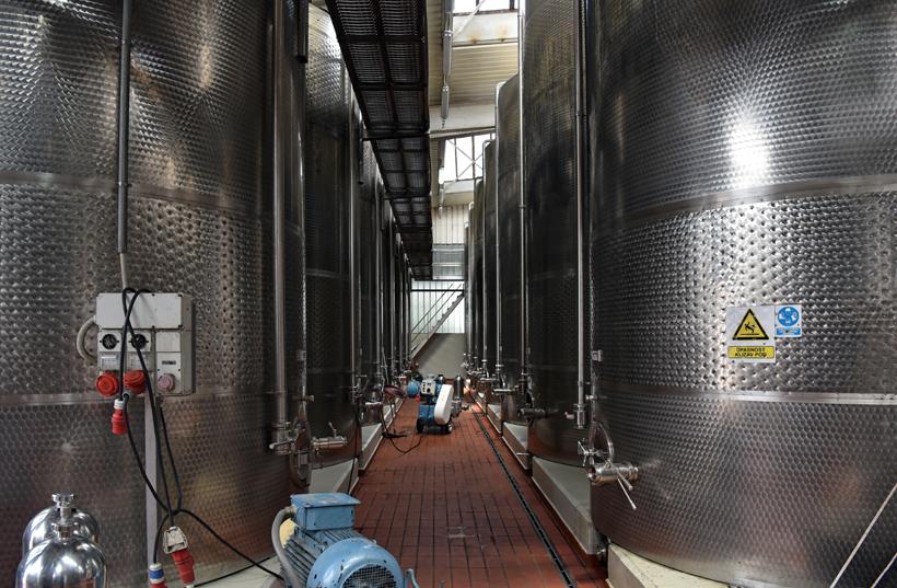 Montenegrin Wine - Plantaže - New Cellar