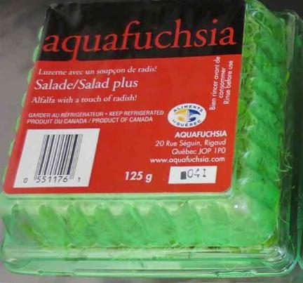 Aquafuchsia Alfalfa Recall