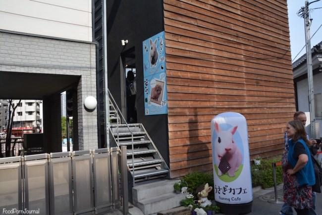 Harry Hedgehog cafe Tokyo