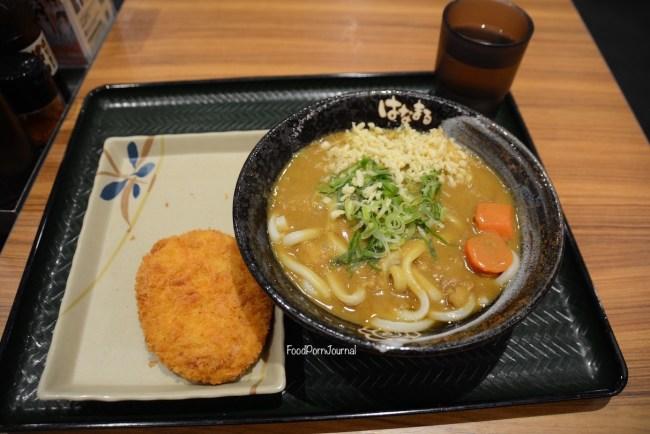 Japan Nagano curry udon