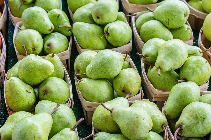 seizoensgroente en fruit van februari