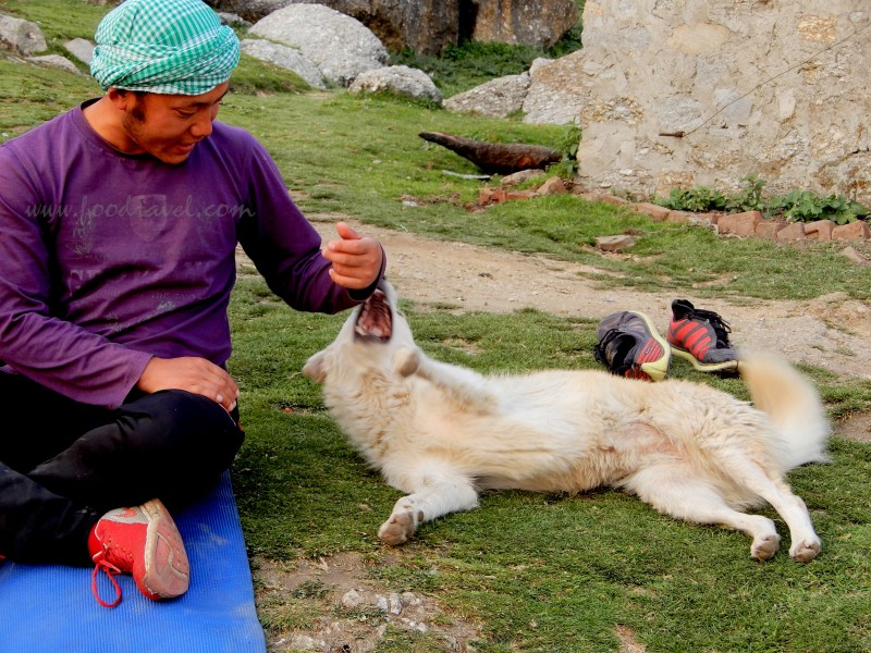 My First Time Camping at Triund