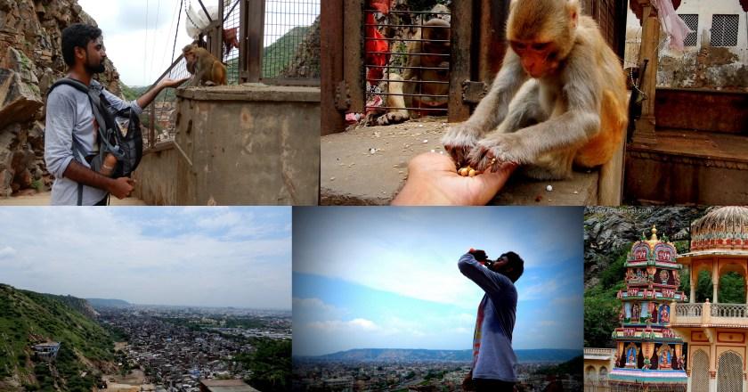Galtaji Temple Jaipur – A trek to the Abode of the Monkeys