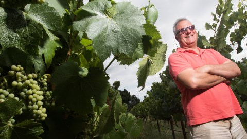 Winemaker Abe Schoener of the Scholium Project inspects one of the vineyards in Napa, California, where he gets his wines.