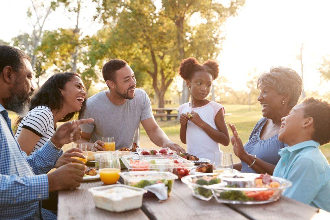 在公園的家庭野餐