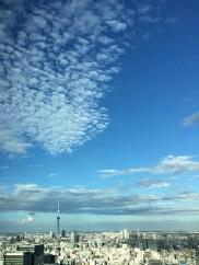 Tokyo skyline from Marunouchi