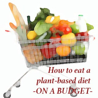How to eat a plant based diet on a budget