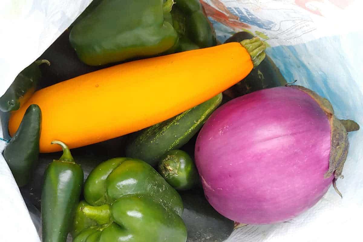 squash, eggplant, peppers