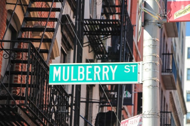 Mulberry Street, New York City, Little Italy