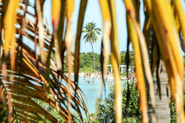 Stop auf dem Weg nach Key West - Bahia Honda State Park, Florida Keys - #dipitontour