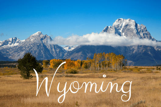 """Apply for Food Stamps in Wyoming Online"""
