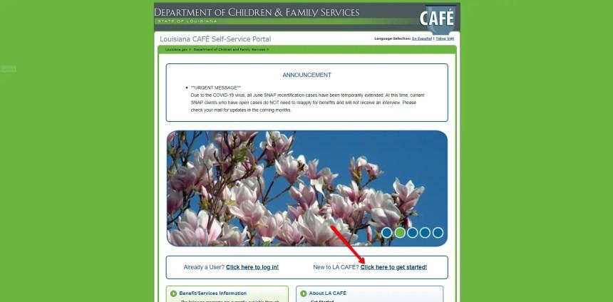 Louisiana LA CAFE Create Account