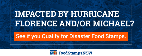 """Hurricane Michael Disaster Food Stamps Florida and Georgia"""
