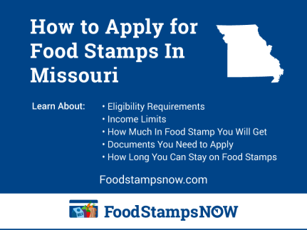 """""""How to Apply for Food Stamps in Missouri Online"""""""