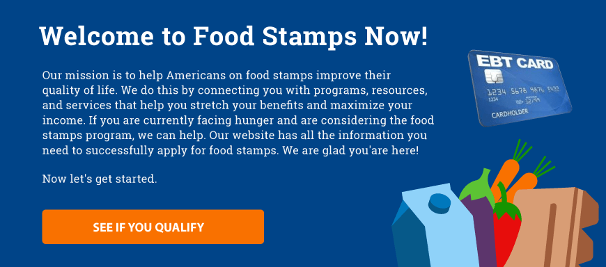 Food Stamps Now Banner
