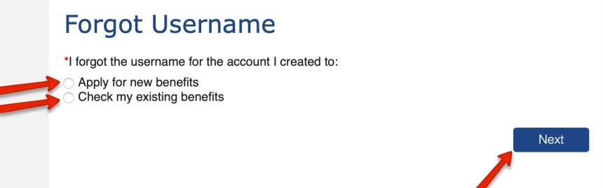 Colorado PEAK Forgot Username 2