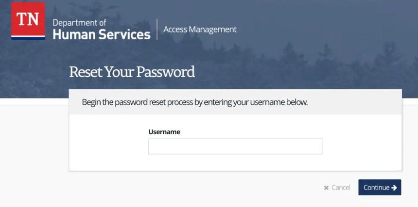 """TN DHS Account password reset"""